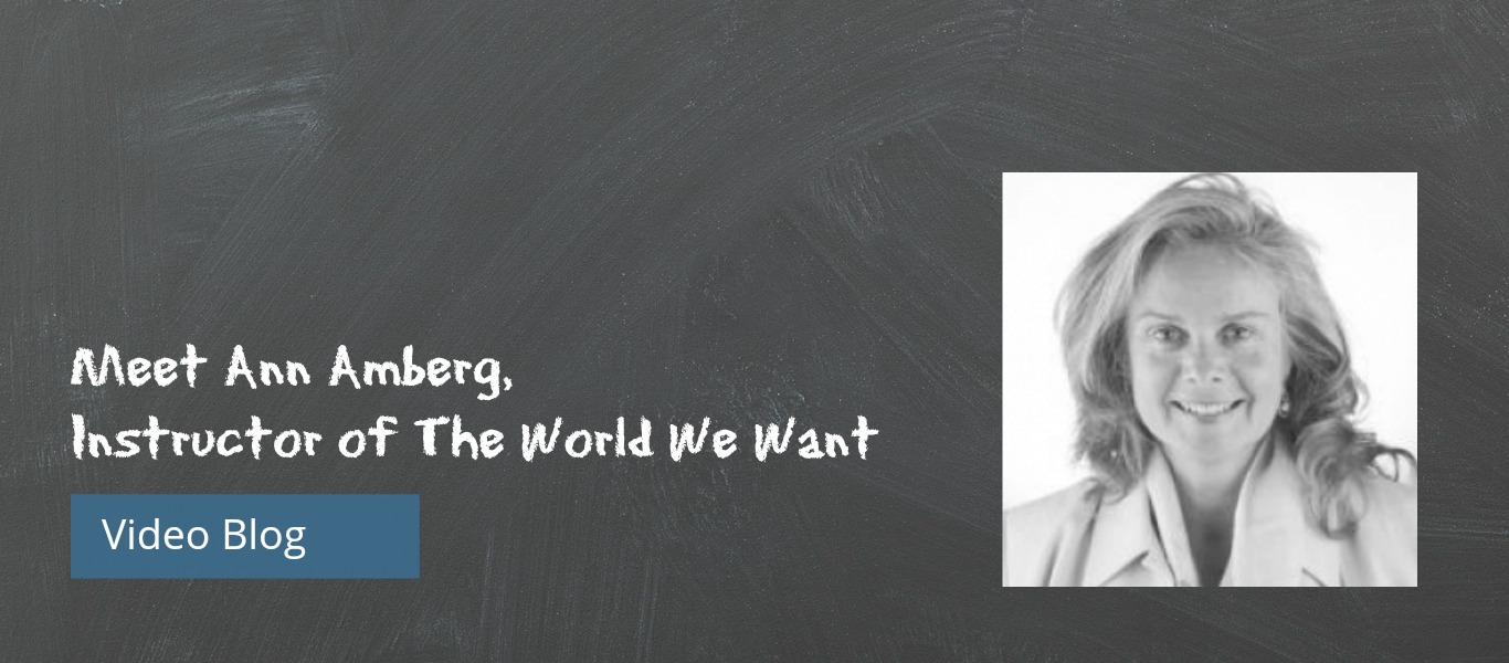Meet Ann Amberg and Learn about The World We Want [VIDEO]